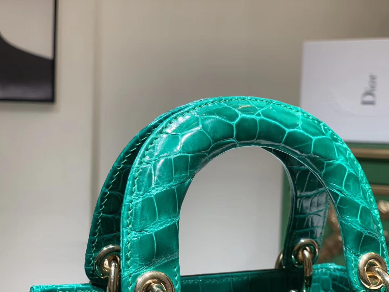 Alligator 美洲鳄 迪奥DIOR戴妃包 接受定制 金银扣